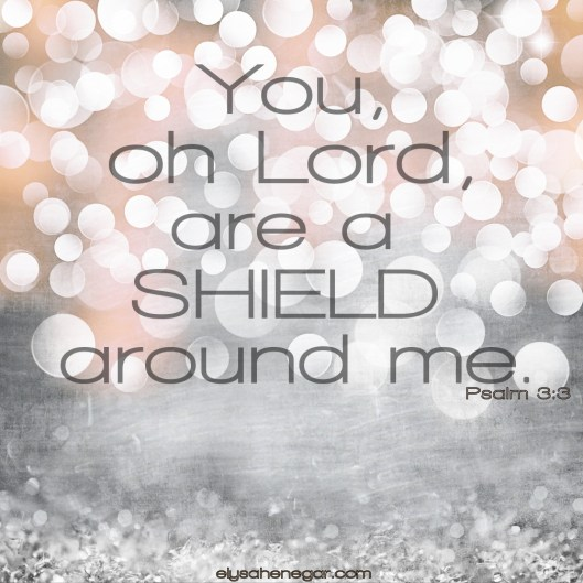 8.7 blog shield