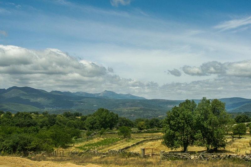 Naturaleza en estado puro en la Sierra de Francia, en Pinedas