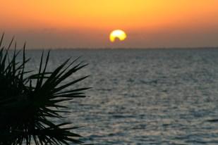 Cūku līcis, Kuba