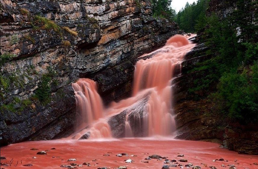 cascadas rosas