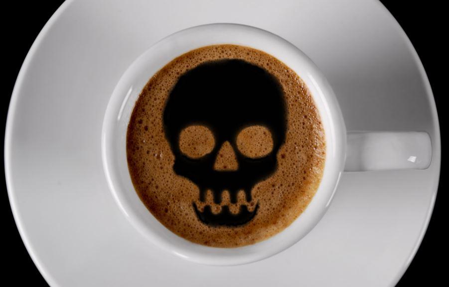 cafe mata elzocco