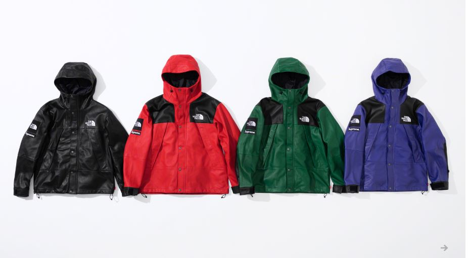 Supreme x The North Face 2018