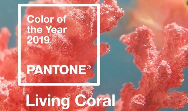 color Pantone para 2019