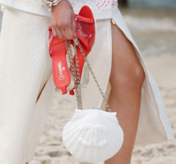 bolsas de conchas