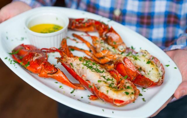 the lobstar