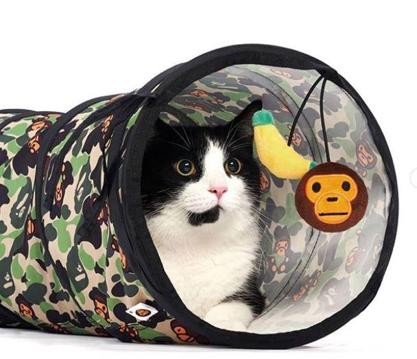 accesorios de camuflaje para mascotas