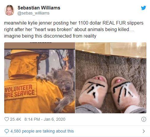 zapatillas de piel de animal