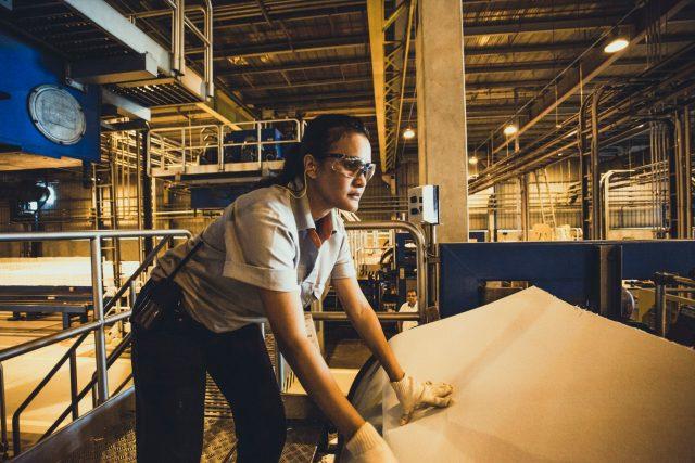Fibria worker at Aracruz pulp plant