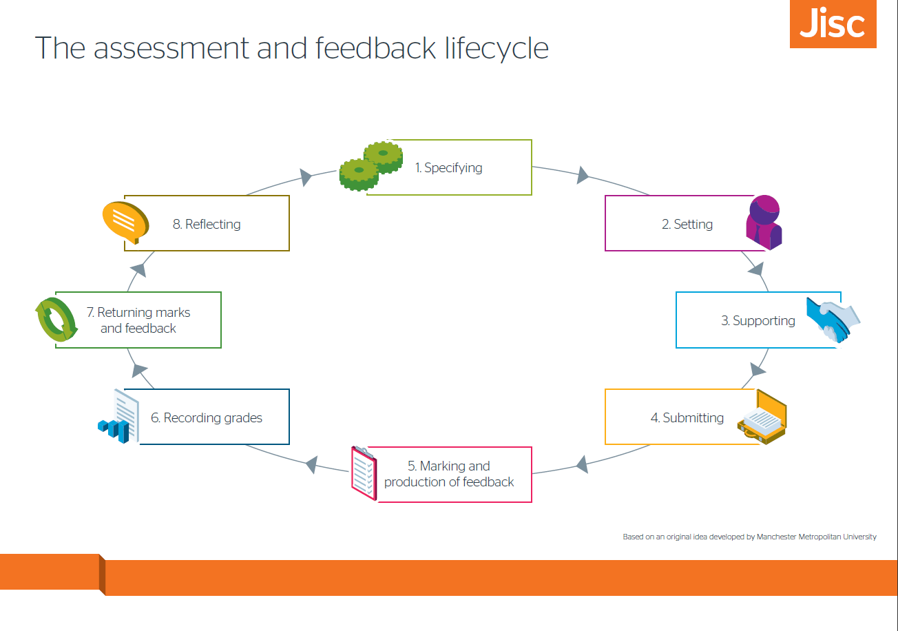 Assessment and feedback lifecycle