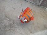 red/orange tiger papier mache fish