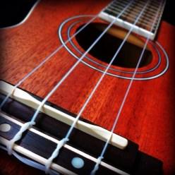 close up of a ukulele