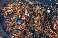 Plastic Oceans, Credit: Kevin Krejci, FlickrCC