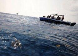 Deepwater Horizon © US Coast Guard