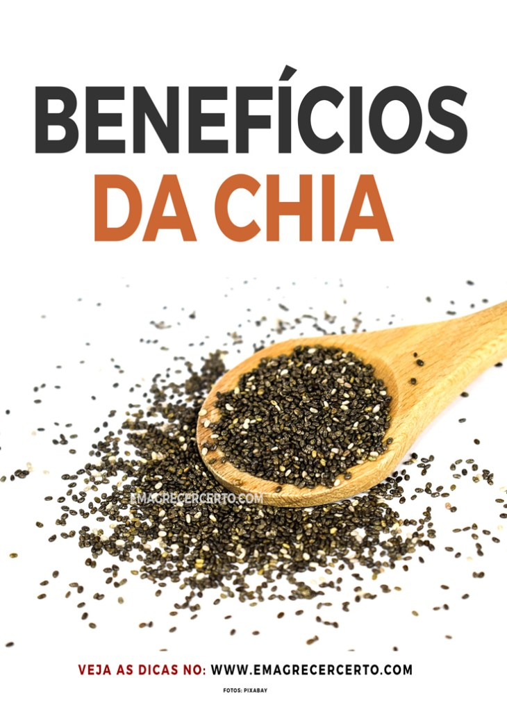 Benefícios da Chia | Blog Emagrecer Certo