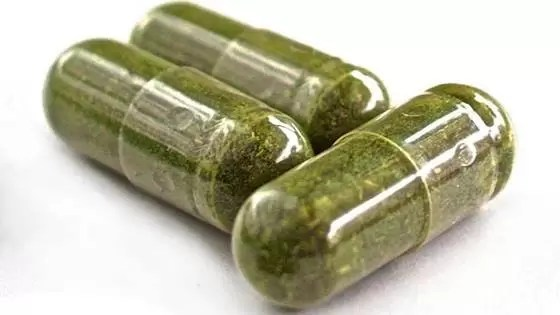 inibidores de apetite naturais- Extrato de chá verde