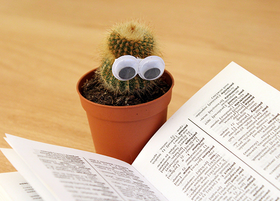 A cactus with googly eyes reading a book