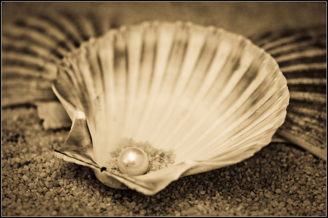Pearl in an oyster shell