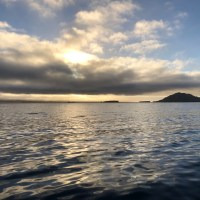 Turtle Bay To Magdalena Bay