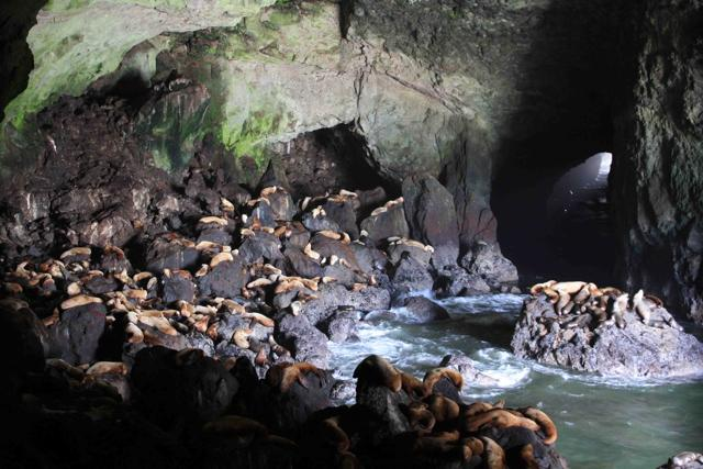 15 grutas
