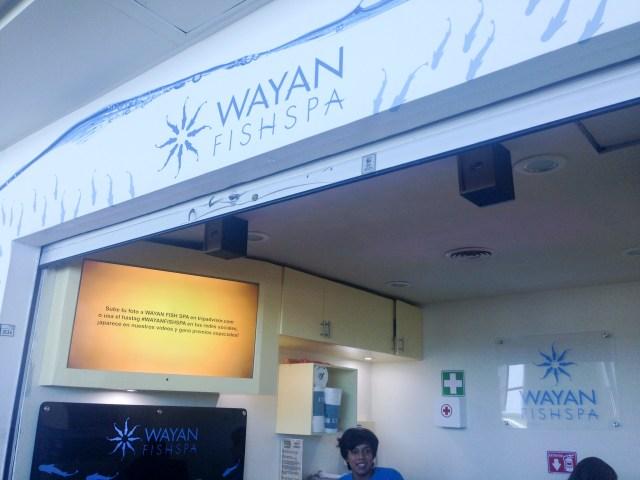 Wayan: um SPA para os pés...diferente!