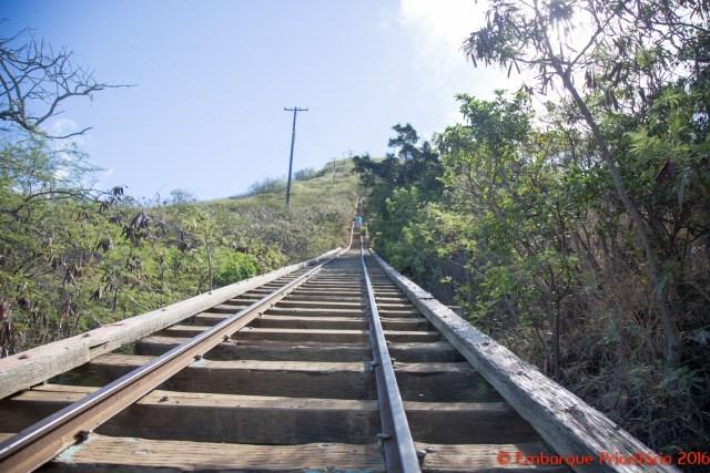Koko Head trail: uma trilha diferente no Havaí