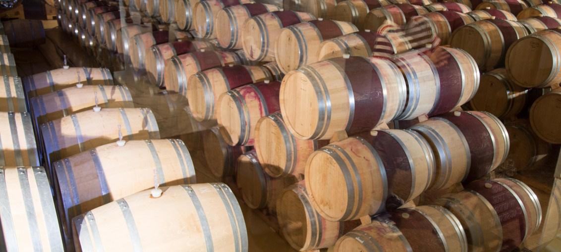 Cidade do Cabo: visitando as vinícolas Groot Constantia e Delaire Graf