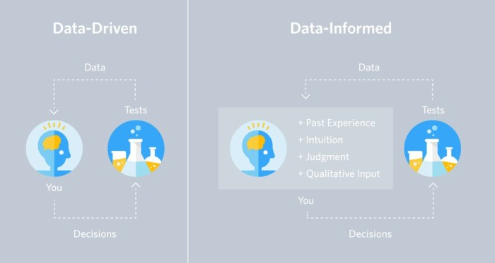 Data-Driven vs Data-Informed