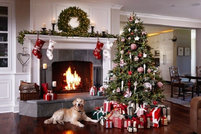 Whenever Your Cat Or Dog Plays With Christmas Décor There S A Good Chance It Will End Up Ruined Before Day Even Arrives What Worse Is