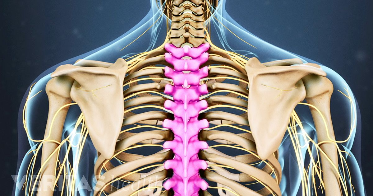 Spine Anatomy Video: Spinal Anatomy, Spine Components and Sources of Back Pain