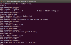 Send files to Zedboard using FTP