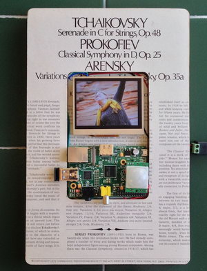 Raspberry Pi picture frame with motion detection - Embedds