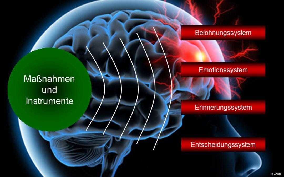 Thorsten Kondlas Leadership Kampfkunst Gehirn