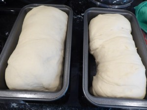 home baked bread before baking