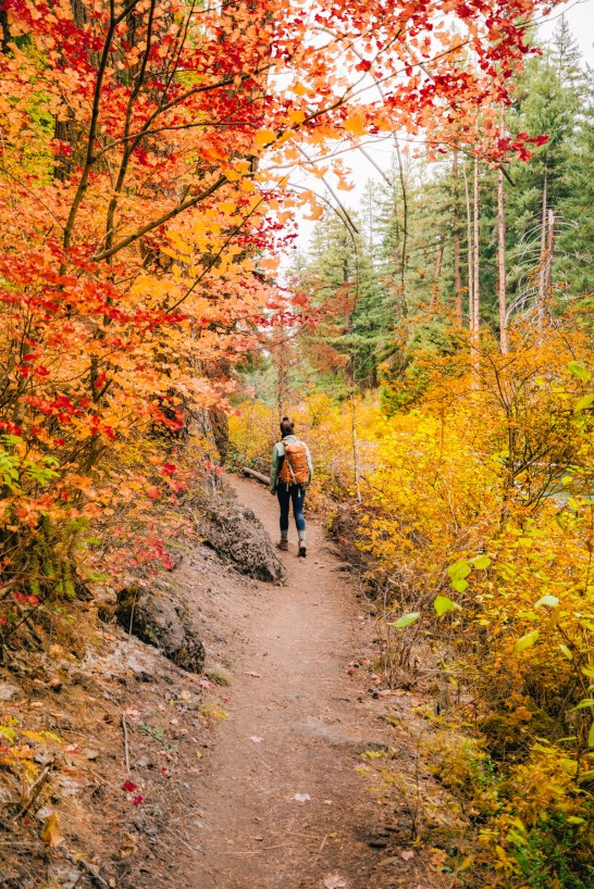fall color in bend, Oregon