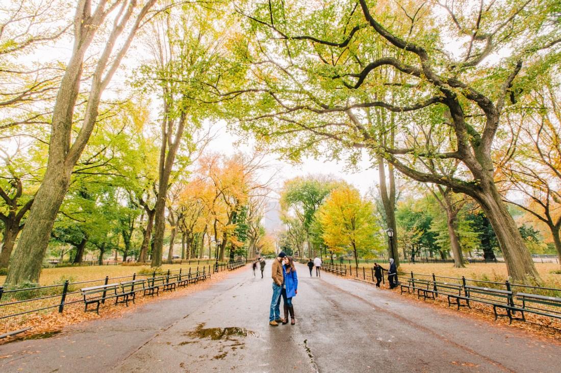 best parks New York City