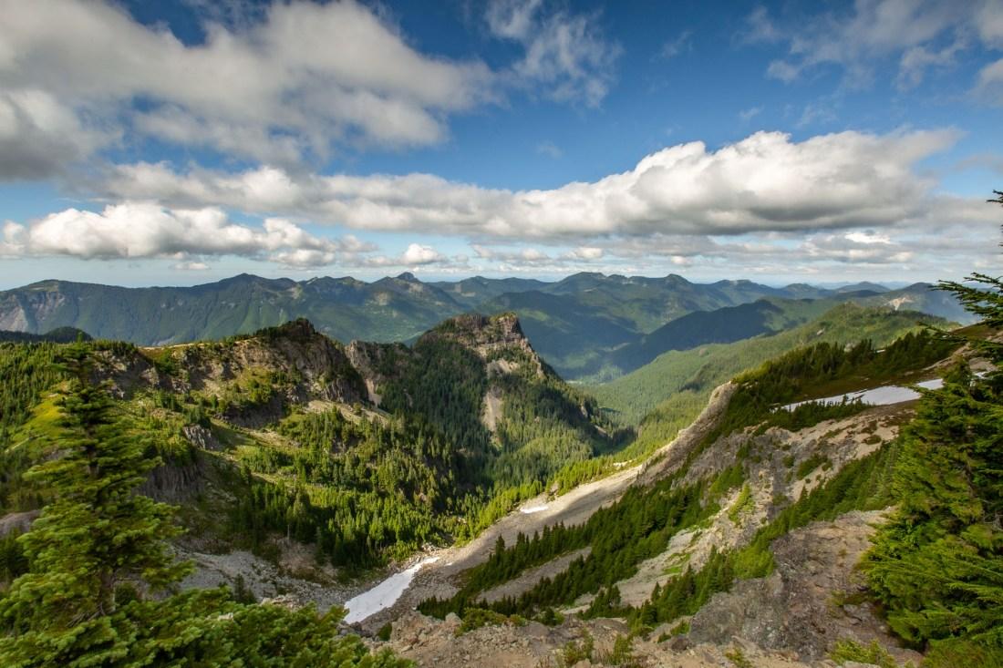 trails in Mt. Rainier