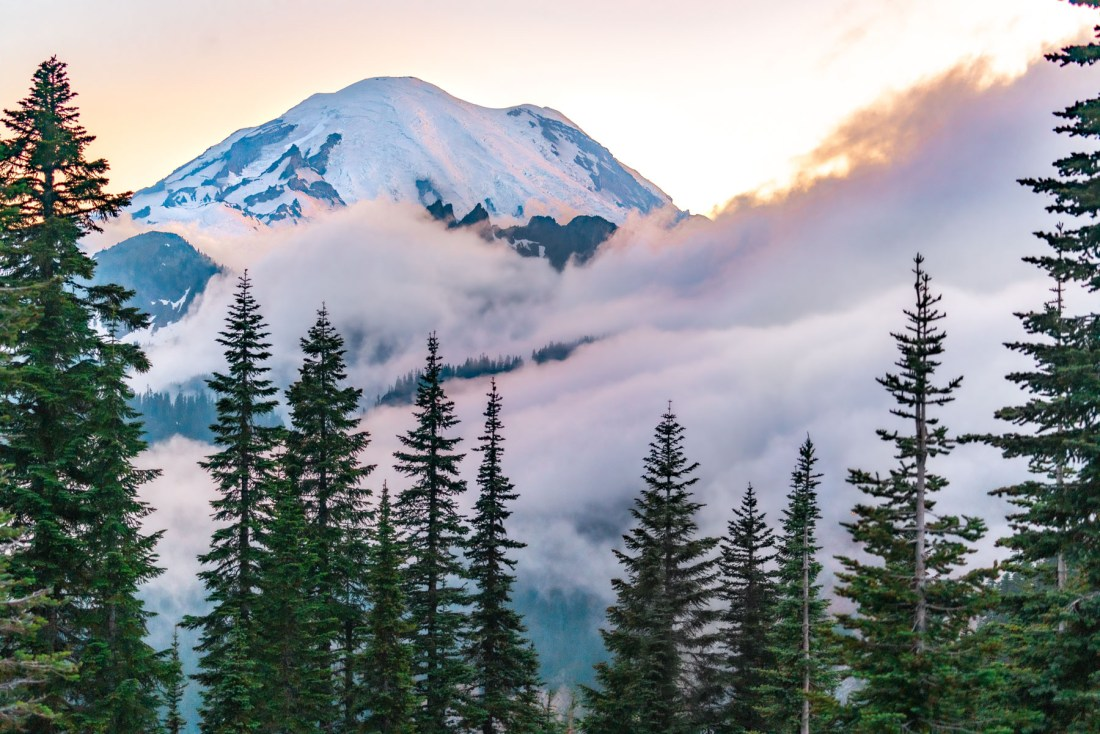 Best day hikes at Mt. Rainier National Park
