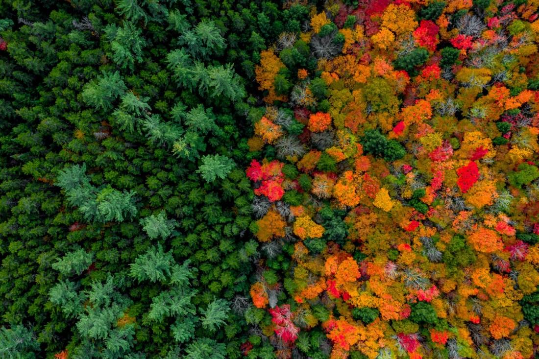 fall color New England