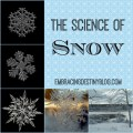 The Science of Snow: Books & Activities at embracingdestinyblog.com