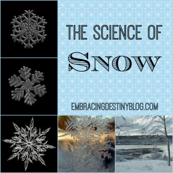 The Science of Snow {Poppins Book Nook}