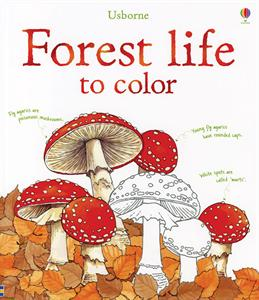 Forest Life Coloring Book