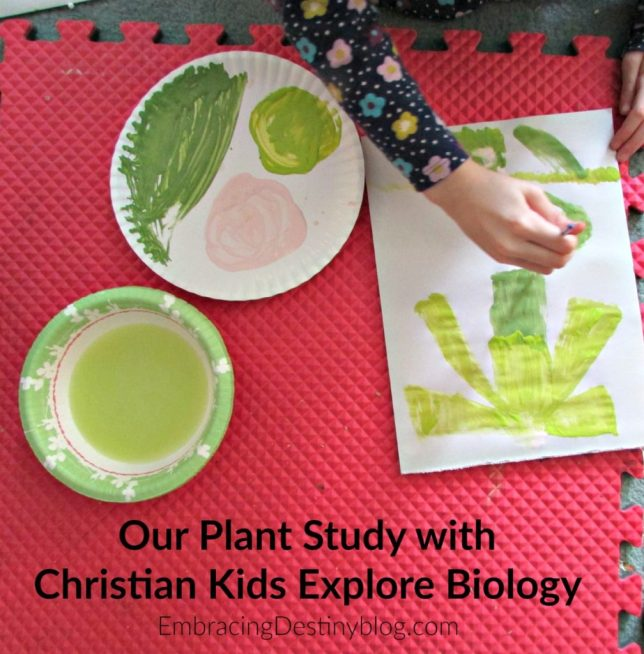 Studying plants and flowers with Christian Kids Explore Biology