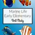 Resources and ideas for a hands-on early elementary marine life unit study. embracingdestinyblog.com
