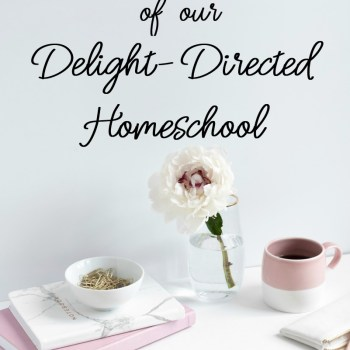 A Day in the Life of Delight-Directed Homeschooling