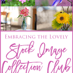 Welcome to the Embracing the Lovely Stock Image Collection Club!