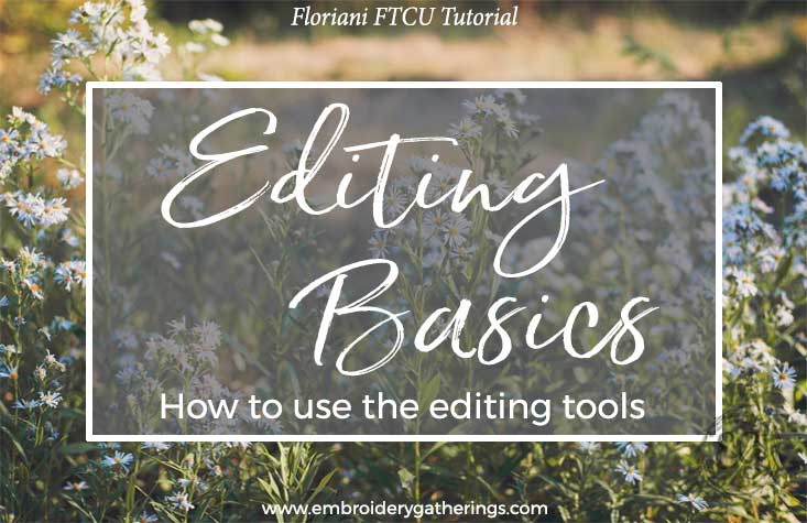 Basic Editing in FTCU