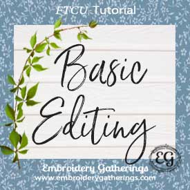 Basic editing in Floriani FTCU