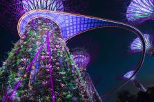 Caption: Gardens by the Bay at night, Singapore, Southeast Asia Credit: © Robert Harding World Imagery / Alamy