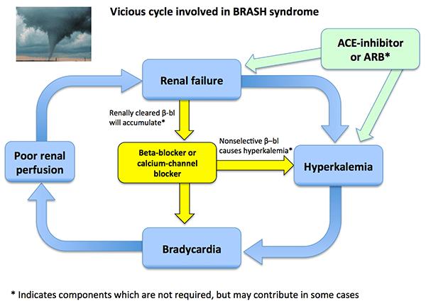 PulmCrit- BRASH syndrome: Bradycardia, Renal failure, Av