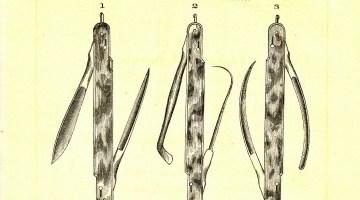 cutaneous abscesses